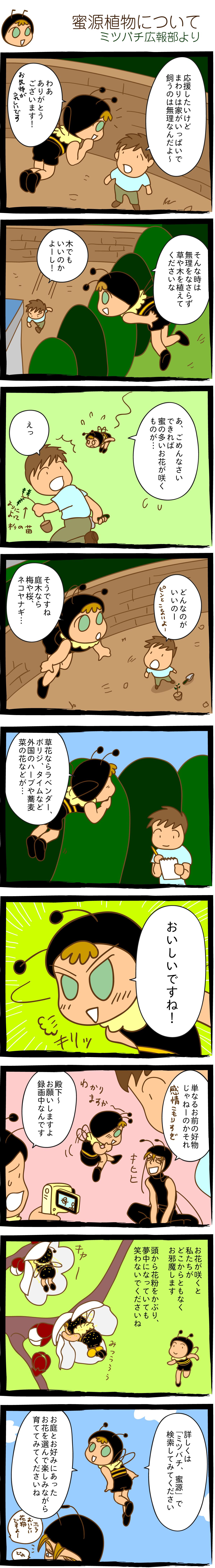 蜜源植物について/広報部