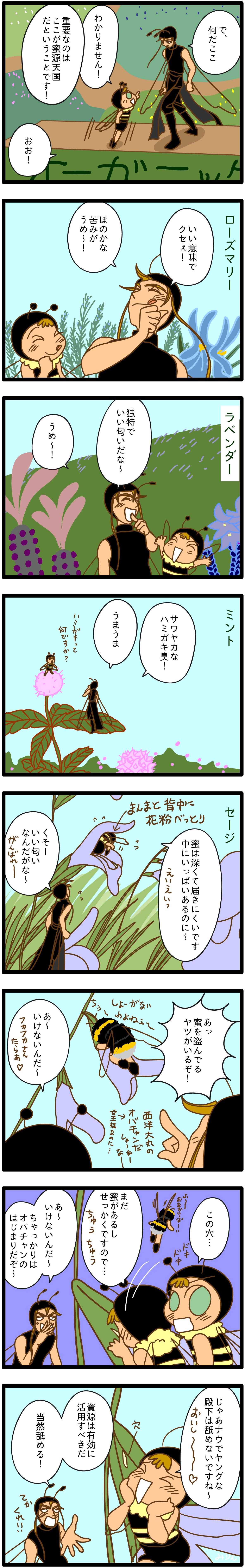 104. ハーブ天国(2)